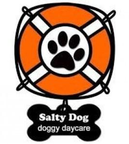 salty dog daycare
