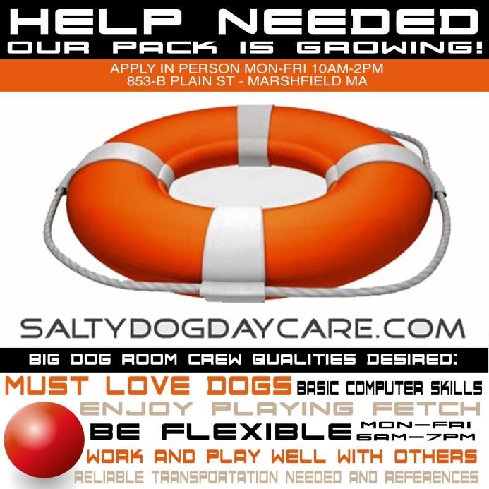 HelpWanted_Salty-Dog