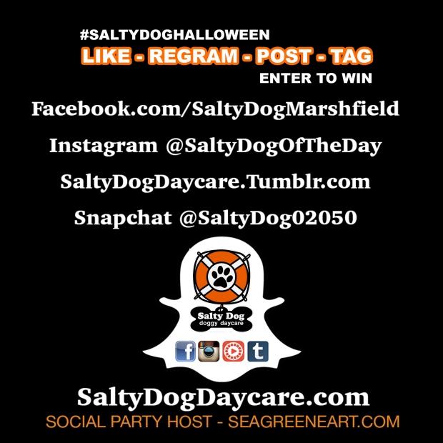 SaltyDogHalloween_1